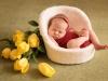 babyborn-20